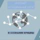 Интернет и социальные сети в сознании Кришны. Часть первая.